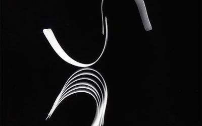 """Exposition """"Florilège d'Elégance"""", Hervé Robillard, création photographique contemporaine"""